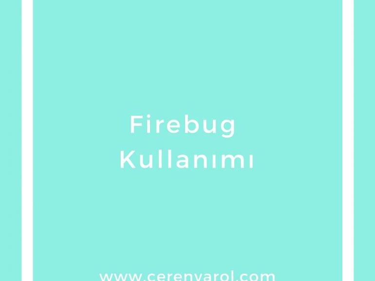 Firebug Kullanımı